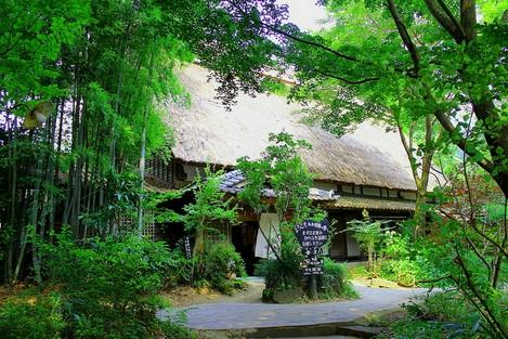 田楽の里で、雑木林に囲まれた閑静なかやぶき民家の店舗です!
