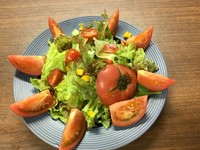 トマトサラダ・野菜サラダ・大根サラダ