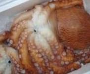 炙りも美味! 850円 一般的な蛸(マダコ)より2~3倍大きく、新鮮な物はプリプリの食感を楽しめます。