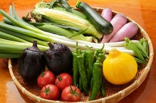 全国から取り寄せる、季節の食材を入荷してつくる料理