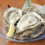 大ぶりの『京都舞鶴産の岩牡蠣』は、クリーミーで濃厚な味わいに身も心も満足の一品。レモンとポン酢で、さっぱりといただきす。※夏限定メニュー