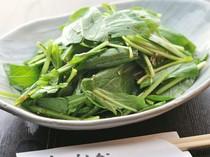 みぶ菜サラダ
