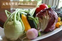 地元の元気な野菜もふんだんに使っています!