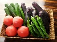京都大原野産 地野菜