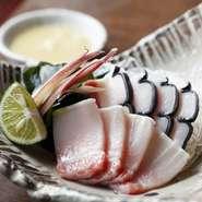 皮鯨とウネスの酢味噌