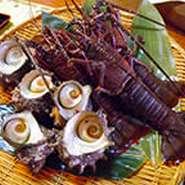 秋に旬を迎えたサンマは脂がのって美味い!全国三位の漁獲量を誇る静岡・南伊豆町の伊勢海老&トロール漁は秋~春に漁解禁。トロール魚は地魚刺身盛合せ、本日のおすすめ&ワゴンメニューで季節限定で召し上がれます
