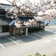 当店の花見弁当と台場公園の桜をお楽しみ下さい。