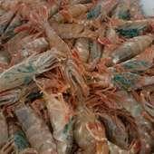 金沢港競り市場でその日に獲れた魚を仕入れ、旬のお料理に。