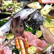 毎日新鮮な魚介類を仕入れております