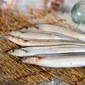 産地直送で提供している鮮魚にこだわりあり