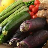 串焼の野菜も新鮮さが大事。少し洋風めにアレンジした野菜串もあります。一品料理など、多めに野菜のメニューも揃っているので、焼鳥の合間にどうぞ。