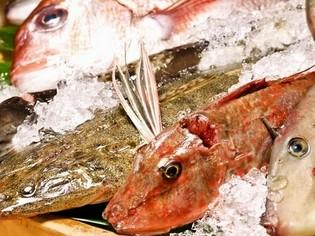 季節ごとに、その時々に美味しい魚をいろいろな料理でお届け
