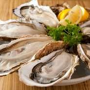 【キンカウーカ】では、常にとれたての生牡蠣が用意されています。全国の牡蠣の産地から、その時期に合わせて届く牡蠣は旨みが濃厚。クリーミーで、美味しさが格別です。