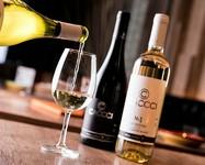 牡蠣に合うワインを追い求め、オリジナルワインの「オイスターシリーズ」から進化を遂げ、よりお食事を楽しめる事ができるワインが完成しました。スペインの名門ミゲル・トーレス・チリ社とのコラボワインです。