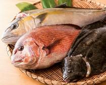 信頼の置ける現地の業者から仕入れる新鮮な魚介