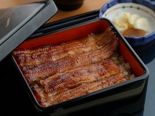 愛知県から厳選して仕入れる国産鰻のみを使用