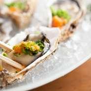 刺身や揚物、焼物などバリエーション豊富な料理が揃った『おまかせコース』が3種類用意されています。飲み放題を付けることもでき、忘年会や新年会など、各種宴会に最適です。