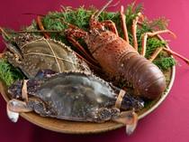 伊勢海老や渡り蟹は、注文が入ってからいけすより取り出して調理