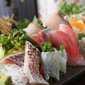 鮮魚のお造り五種盛り 一人前