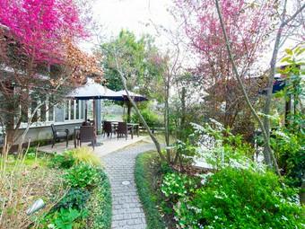 水の都・熊本が誇る江津湖畔で、美味しくて贅沢な時間が叶う!