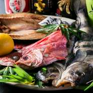 【ひもの屋】の干物は美味しさに定評のある【伴助】のものを品揃え。また、刺身や他の料理に使う魚介や野菜、肉も、新鮮さと品質の確かなものを仕入れています。素材の旨さを閉じ込めた料理を満喫してください。