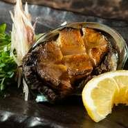 鮮度抜群の活き鮑の鉄板焼き。繊細な技術で、鮑の食感や味わいを存分に引き立ててくれます。