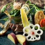 旬の食材を積極的に取り入れることも大切なテーマ。コースの序盤では季節の素材をあしらった前菜盛り合わせを提供。彩り鮮やかに、優雅な食のひとときの始まりを告げてくれます。