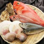 独立前から通い慣れた市場に足を運び、食材を目利きしているという曽我部さん。その日一番の魚介を仕入れられるのは、長年にわたり積み重ねた信頼関係があるからこそ。季節ごとに新鮮な海の幸を堪能できます。