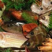 市場より直送!新鮮な瀬戸内の魚介類