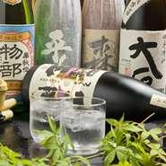 ビール、ハイボール、焼酎、日本酒、カクテル、サワー、果実酒、ソフトドリンク