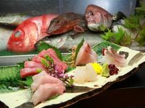 自慢の鮮魚を使ったお刺身の盛合わせ。人数、予算にも応じます