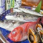 鮮魚は遠州灘や浜名湖がある浜松で獲れた贅沢もの。その日仕入れた魚介類でお造りする刺盛りは、定食にも付いています。