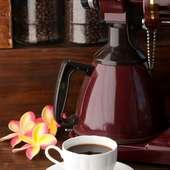 挽きたてコーヒーは、なんと300円!