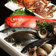 一本釣り・地物をはじめとした食材を使用しています。