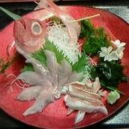 小田原直送! 一本釣り地金目姿造り1280円より1580円、頭あら汁など出来ます。 煮付け焼き魚、ちり蒸し金目茶漬けなどにてもご用意させて頂きます。