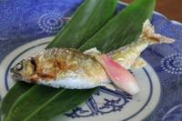 釣り好きな店主が釣って来る捕れたての鮎や岩魚を是非食べて下さい!店主におまかせコース料理に加える事が出来ますのでお気軽にお問い合わせ下さい。 (7月~9月末位)