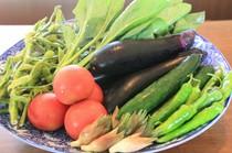 旬の食材で彩られた料理の数々!高山の四季を感じて下さい!