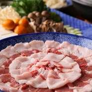 飛騨の山々にはたくさんの自然が残っています! 特にどんぐりをたくさん食べた猪など美味しいジビエ料理が出来ます。 店主私は知り合いのマタギさんからこだわって本当に美味しいジビエだけを仕入れ肴流にお出ししています。 特に天然雌猪のスペアリブ・ぼたん鍋は最高です! 是非ジビエ料理に興味のある方はおこし下さい! 12月~3月いっぱいまで楽しむ事が出来ますよ。