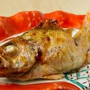 日本海で獲れる新鮮なのどぐろが毎日入荷しております。
