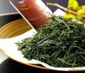 ・黒烏龍茶・玄米緑茶(抹茶入り)・ほうじ茶