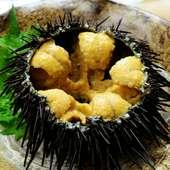 八戸漁港からの新鮮な魚介いこだわり