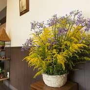 店主のお母さんが畑で育てているという季節の花。いつも新鮮な花が飾ってある気持ちのよいお店です。こんな素敵なお花に迎えられたら心も和みます。心も体も喜ぶキッチン・カフェです。