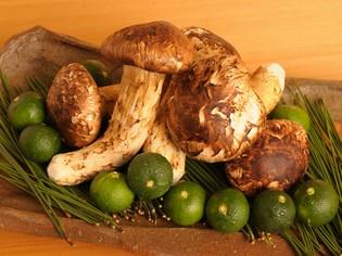 季節の土鍋御飯で堪能する「松茸」