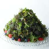 ジャッジョーロ名物『15種類のハーブサラダ』