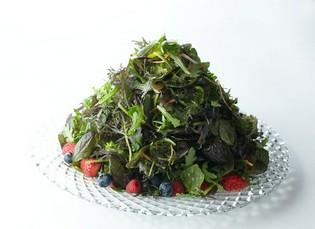 香りも豊かな『15種類のハーブサラダ』をご堪能ください