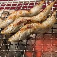 滋賀県の琵琶湖固有魚である貴重な「本モロコ」を炭火で炙ります。 生姜醤油、塩、酢、酢みそなどお好みに合わせてお召し上がり下さい。