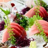 マグロ問屋直営の店だから、年間を通して安定した価格で提供できます。お料理はボリュームがありリーズナブル。店の近くには「マグロ」を紹介する観光スポットもあり、九州、大阪など全国からお客さまが来店します。