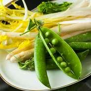 グリンピースはイタリア産、ピサンリはフランス産と、実際に現地で使われる食材も料理に取り入れます。それは、本場の味に限りなく近いひと皿を生み出すためのこだわりです。