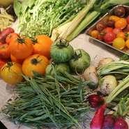 長野県の契約農家さんから届いた有機無農薬野菜の旨み・甘みを存分にお楽しみ下さい!