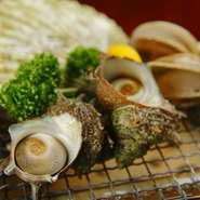 毎日限定10人前の北海道産『ホタテ貝焼き』が280円! サザエやアワビも焼きたてアツアツで食べられます。自分で焼きたい方、焼いてもらいたい方どちらでもお好みで新鮮な海の幸が楽しめます。